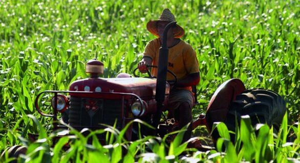 Desembolsos de crédito rural têm forte alta
