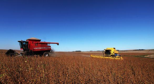 Empréstimos agrícolas de grandes e médios produtores crescem 14% na atual safra