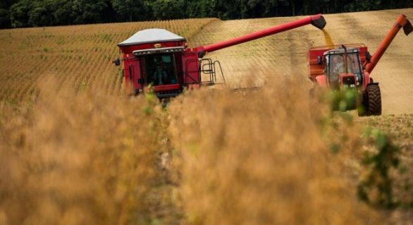 Valor da produção agropecuária de 2018 é de R$ 516,6 bilhões