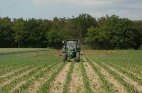 Exportações no agronegócio crescem 4,1% em março