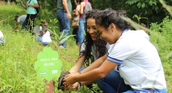 IMA/AL começa a intensificar ações de plantio em Alagoas