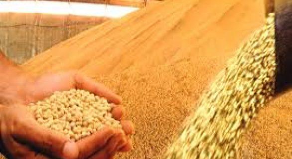 Mesmo com redução de 3,4%, safra de grãos é segundo recorde no país