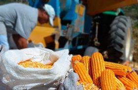 Produtores rurais do Programa de Vendas em Balcão são fiscalizados em AL