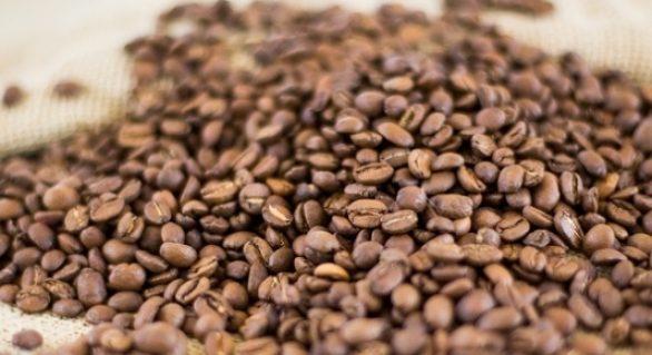Produção de café será recorde em 2018