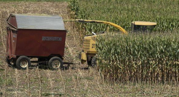 Setor agrícola inicia retomada com a liberação parcial das estradas