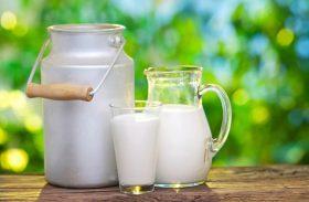 Pequenos produtores de leite de AL recebem testes mensais de qualidade