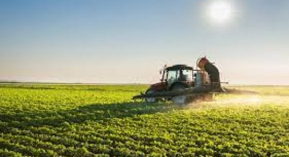 Agro cai 2,6% no 1º trimestre em relação ao período em 2017