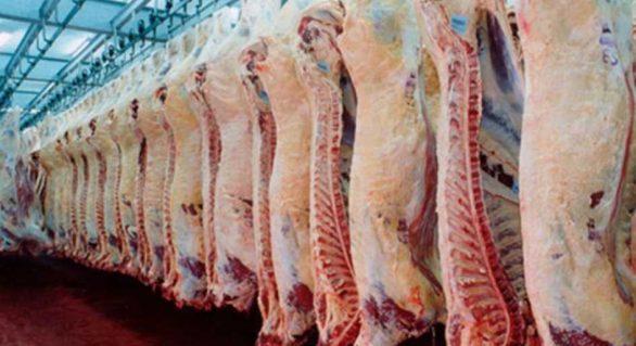 Produção e exportação mundial de carnes deverá crescer em 2018