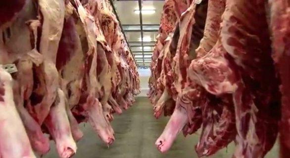 Carne é principal produto exportado por Alta Floresta
