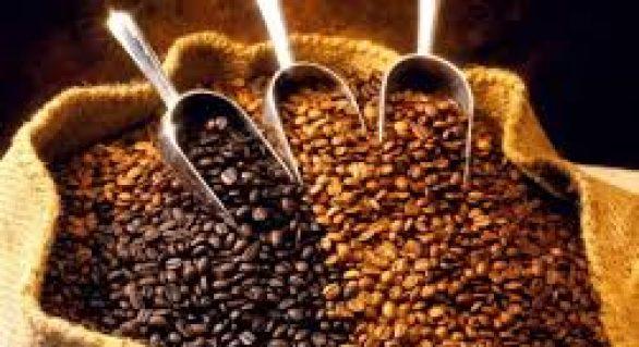 Consumo dos cafés especiais cresce 12% ao ano em nível mundial