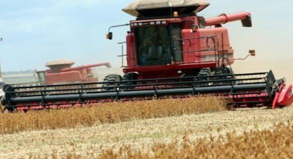 Brasil deve plantar recorde de soja em 18/19 apesar de custos e incertezas