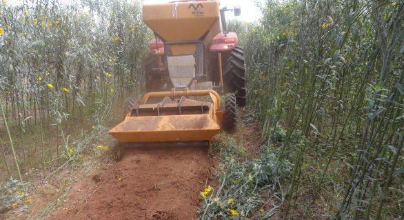 A canteirização aumenta a produtividade e reduz custos no preparo do solo entre R$ 300,00 a R$500,00 por hectare