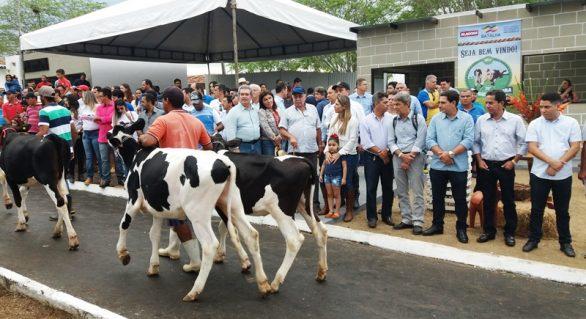 Parque Mair Amaral vai abrir portões para 36ª Expo Bacia Leiteira
