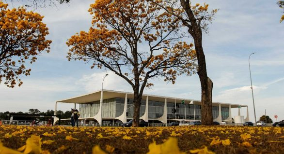 Presidência da República vai gastar R$ 6 milhões anuais com jardinagem