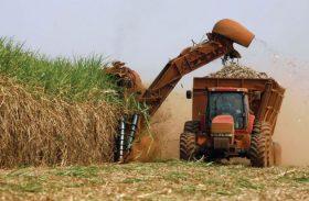Usinas moeram 1,8 mi de toneladas de cana