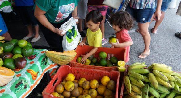Feira Orgânica da Semarh acontece no domingo (11) na Ponta Verde