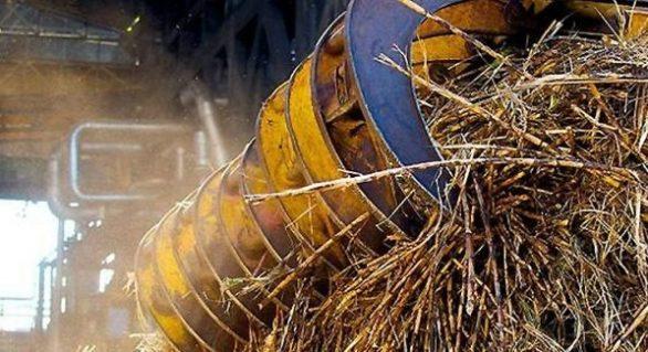 Produção de açúcar tem superávit superior de 200 mil toneladas