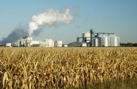 Produção de etanol cresce em 160 mi de litros em comparação a safra passada