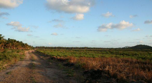 PGE se manifesta contrária a obra do Aeroporto de Maragogi