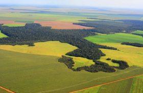 Receita Federal publica nova Instrução Normativa sobre o Valor da Terra Nua por hectare