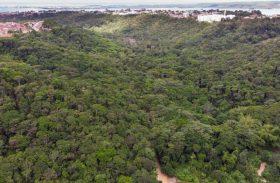 Alagoas amplia reservas ambientais