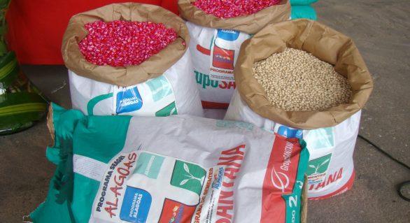 Fetag-AL alerta que o corte de 50% nas sementes pode chegar a 100%