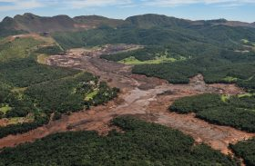 Brasileiros acham que o Senado pode evitar tragédias ambientais