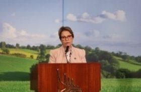 Plano Safra destaca seguro rural e pequenos agricultores