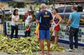 Feira da Agricultura Familiar da Fetag acontece em Maceió