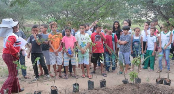 Município promove atividades de sustentabilidade na semana do meio ambiente