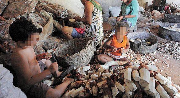 MPT lança observatório informativo sobre trabalho infantil