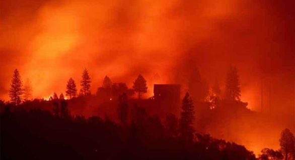 Incêndios avançam no Paraguai e destroem ao menos 61 mil hectares