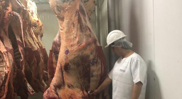 FrigoVale renova SIE e reforça compromisso de fornecer de carne de qualidade