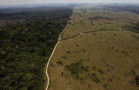 Alemanha suspende parte de verba que iria para a Amazônia