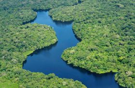 Fundo Amazônia será tema de debate na Comissão Mista de Mudanças Climáticas