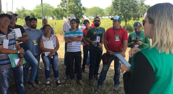 CPLA incentiva o crescimento dos produtores do semiárido alagoano