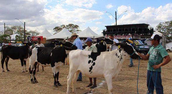 37ª Expo Bacia vai reunir criadores de todo Nordeste