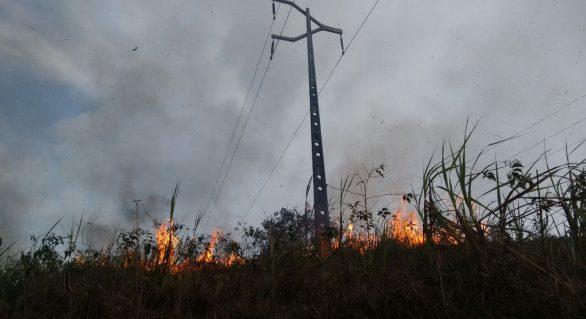 Equatorial inicia campanha de combate a queimadas próximas à rede elétrica
