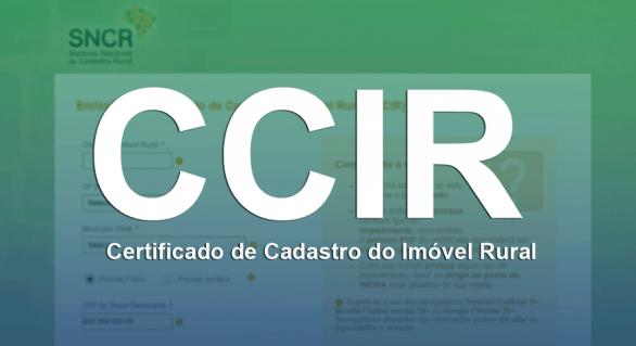 Faeal auxilia produtores na emissão do CCIR 2019