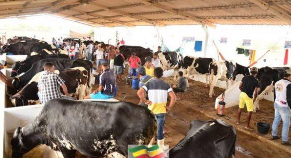 Pindorama lança produto na 37ª Expo Bacia Leiteira