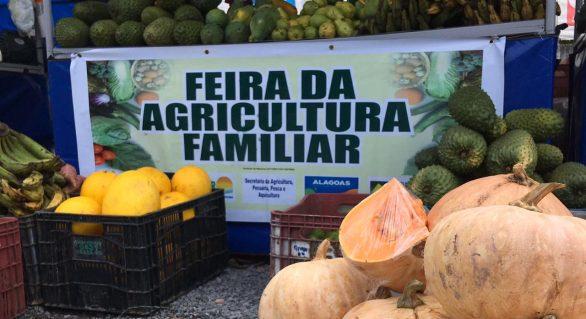 Fetag/AL promove a sétima edição da feira da agricultura familiar