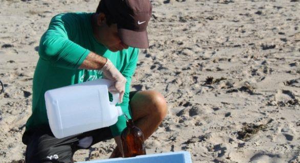 Amostras de diferentes trechos de praias de AL indicam águas livres de contaminação