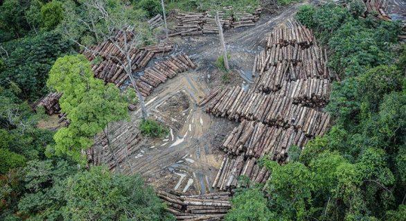 Comissão debate novo modelo de desenvolvimento para Amazônia