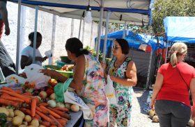 Feira da Agricultura Familiar segue até sábado (07)