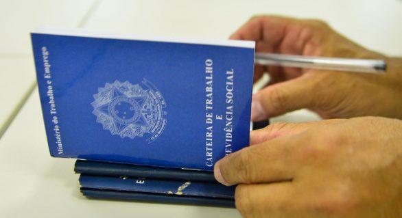 País criou 644 mil novas vagas de trabalho em 2019