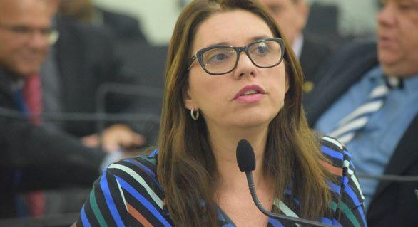 Deputada pede atuação conjunta de secretarias e órgãos para minimizar efeitos da pandemia