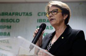 Ministra da Agricultura garante que não há falta de alimentos
