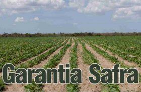 Garantia-Safra já injetou R$ 8,3 milhões em Alagoas este ano