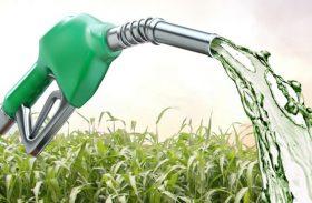 Governo estuda pacote de auxílio ao setor de etanol