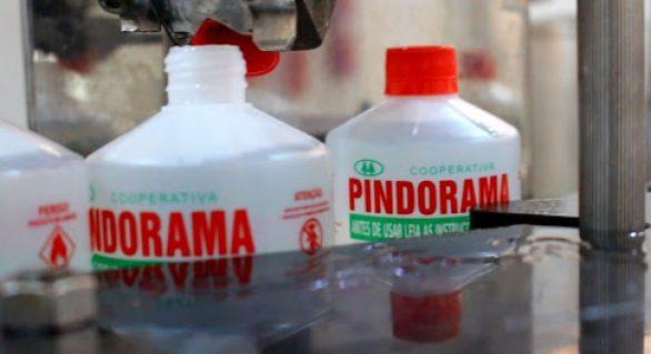 Pindorama lança novas versões de álcool no mercado